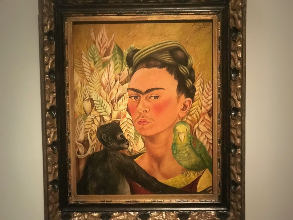 The Frida Carlo exhibit is the most famous painting in MALBA.