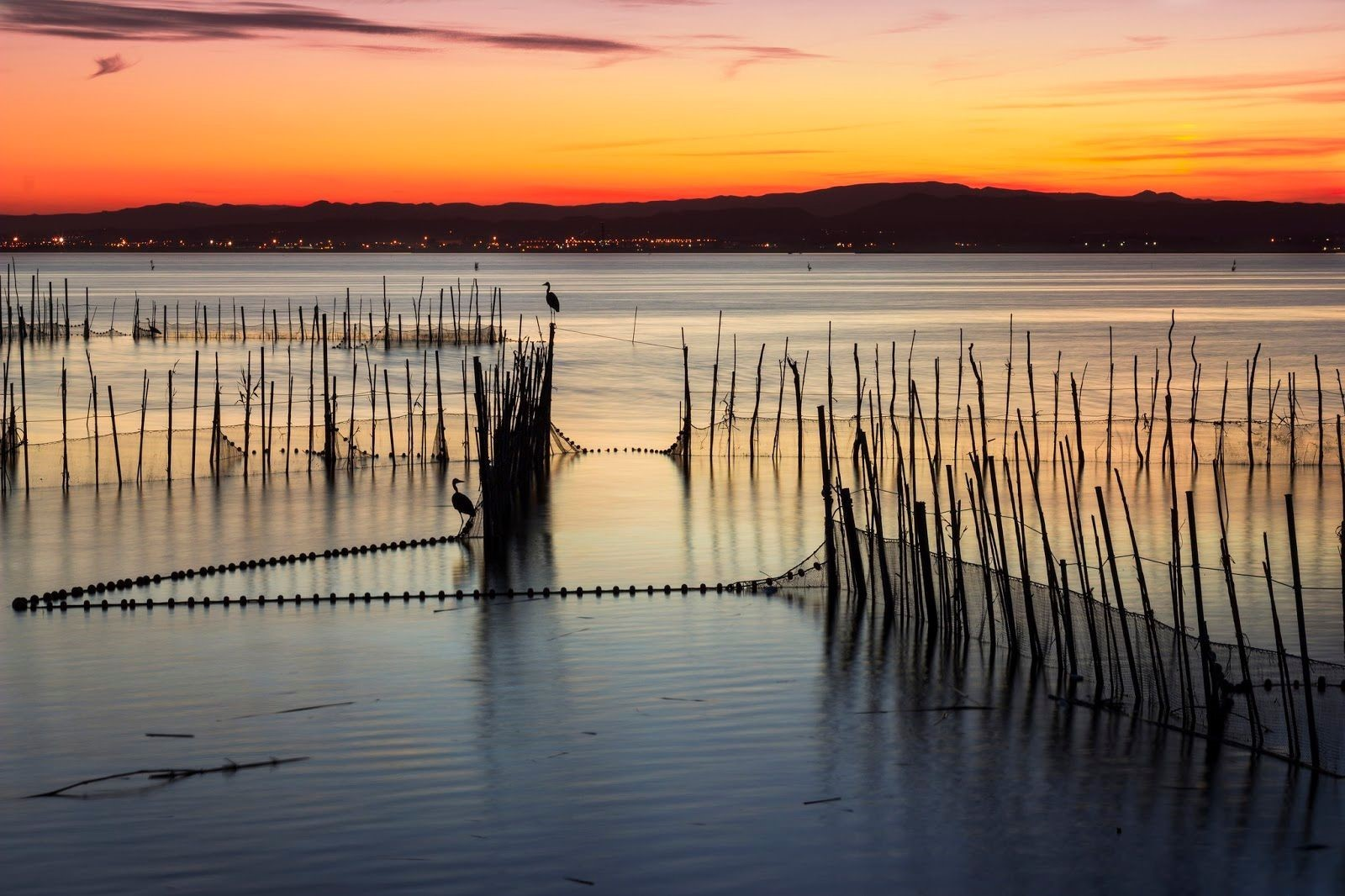 8. Albufera Natural Park Valencia